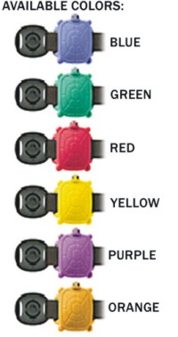 Pool Turtle wristband Colours